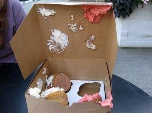 Cupcake Catastrophy