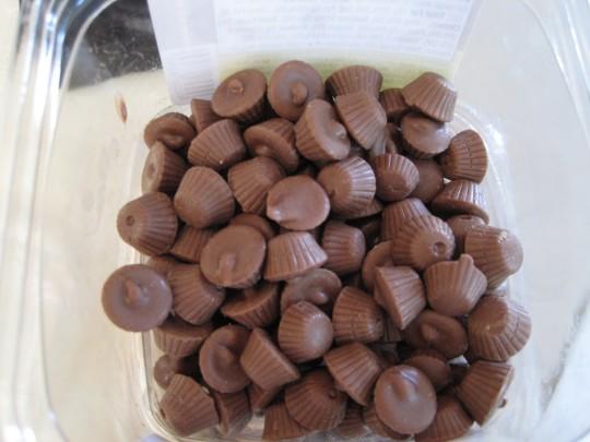 Moosetracks | The Cupcake Addict's Cupcake Collection